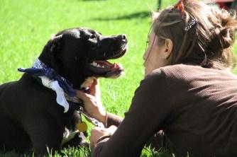 6 benefícios dos animais de estimação para saúde mental