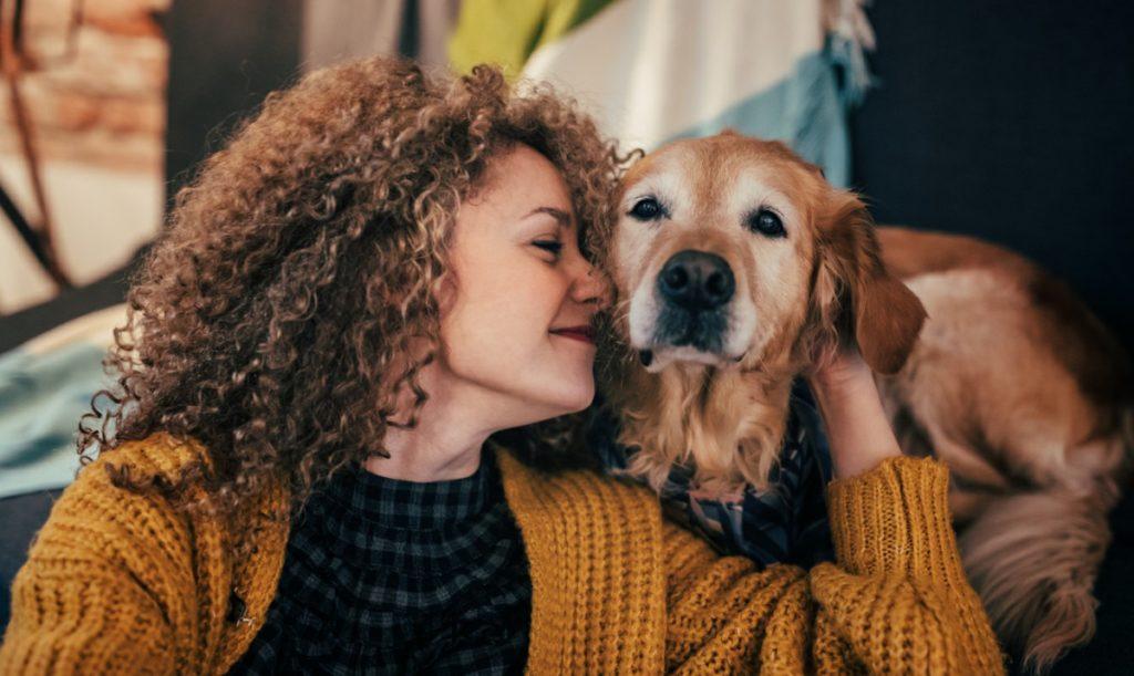 A influência dos animais de estimação na vida das pessoas